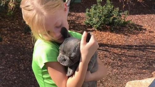 Police Track Down Stolen Puppy Sold On Craigslist Cbs News 8 San