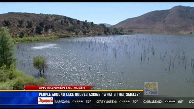 """Honda Of Escondido >> People around Lake Hodges asking """"What's that smell ..."""