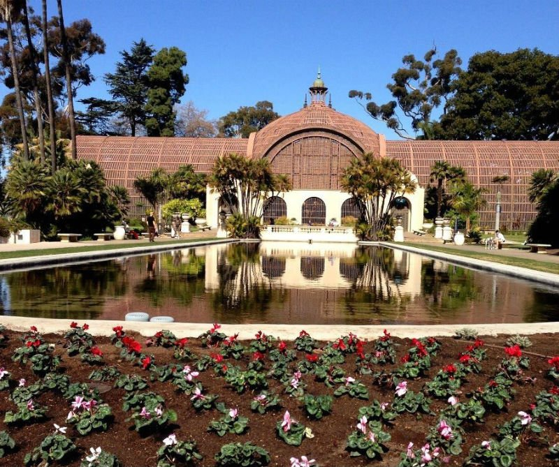 Repairs Complete At Balboa Park Lily Pond Cbs News 8 San Diego Ca News Station Kfmb Channel 8