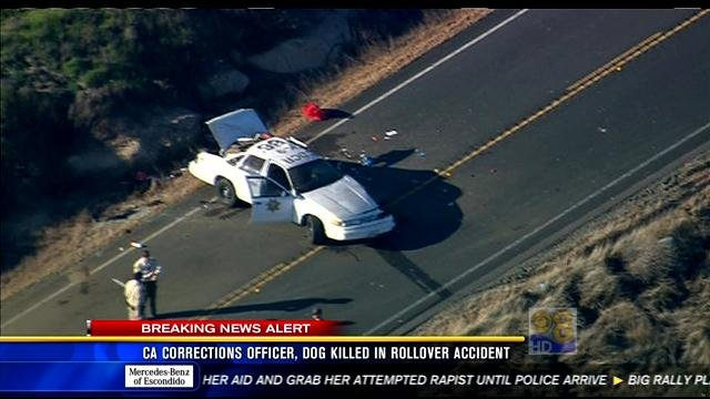 Warner Springs Car Accident