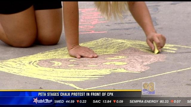 Peta Stages Chalk Protest In Front Of La Jolla Restaurant Cbs News 8 San Diego Ca News