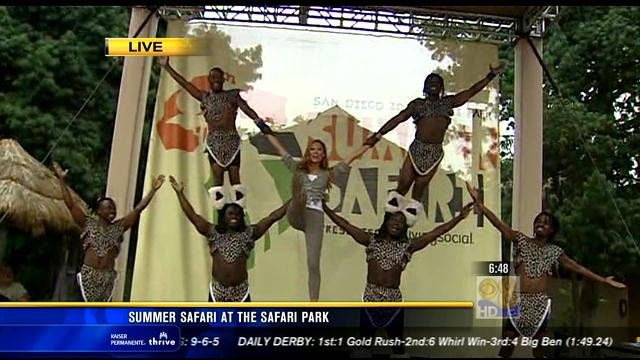 Station Park Honda >> Summer Safari at SD Zoo Safari Park - CBS News 8 - San Diego, CA News Station - KFMB Channel 8