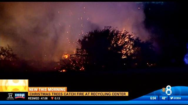 Christmas Trees Catch Fire At Recycling Center