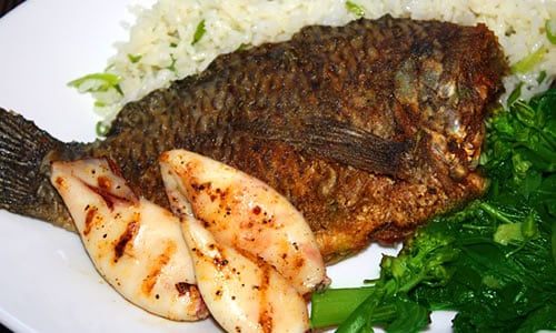 ... broiled tilapia oreganata grilled or broiled steak broiled scallops