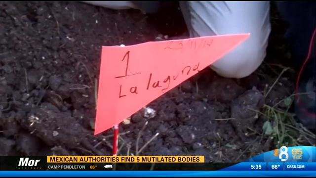 mexican authorities find 5 mutilated bodies cbs news 8 san diego