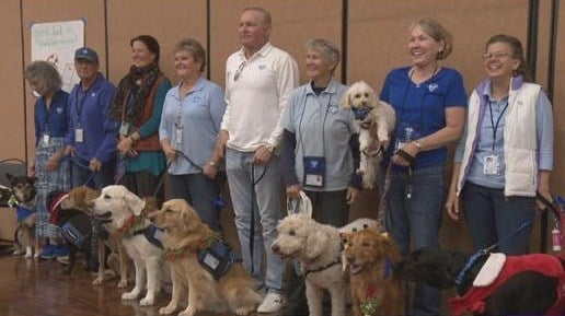 Students at UC San Diego de-stress with therapy dogs