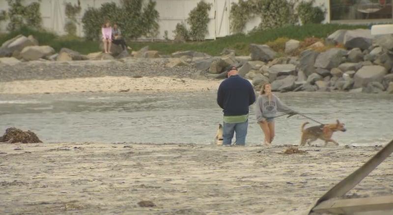 Dog Beach In Del Mar No Longer Leashless