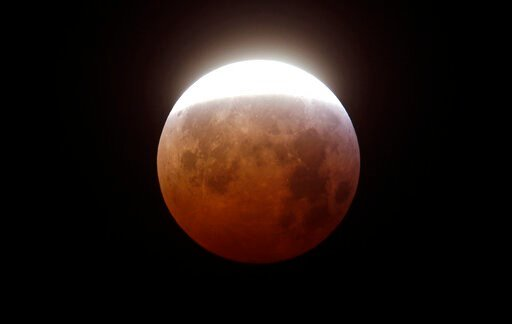 wolf blood moon january 2019 florida - photo #46