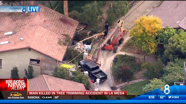 man killed in la mesa tree trimming accident id d   cbs